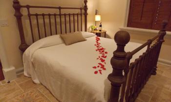 King bed Cabernet Suite
